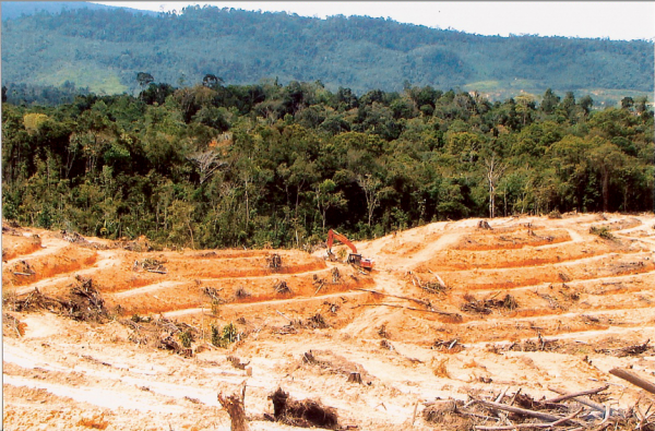 Is the Federal Government powerless to prevent the thugs permitting this logging of Melikin Native Customary Lands if Taib's cronies are the ones to profit?