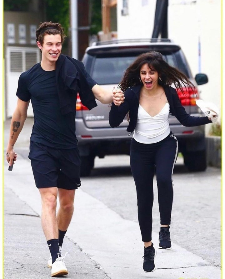 Shawn Mendes and Camila Cabello in relationship
