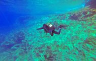 Il subacqueo senza nome (di Luca Ronchi)