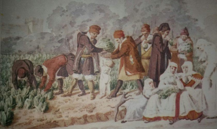 Leonardo Sole e la Sassari che non c'è mai stata (di Cosimo Filigheddu)