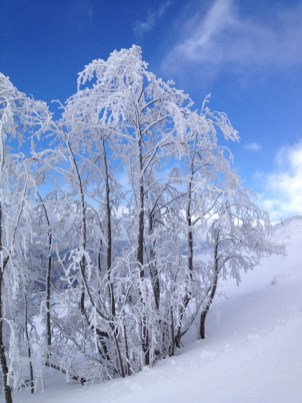 Skifahren in Sardinien 1