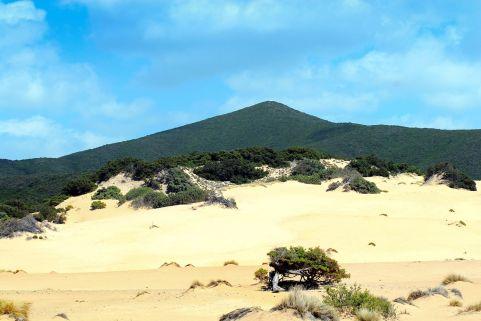 Die schönsten Strände auf Sardinien