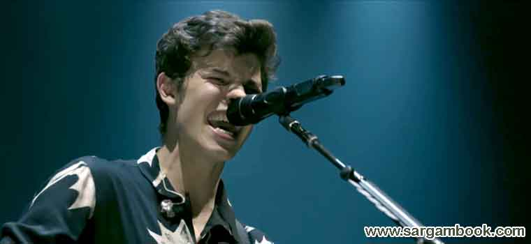 There's Nothing Holdin' Me Back (Shawn Mendes)