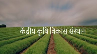 Photo of CAGDI-Kendriya Krishi Vikas Sansthan Recruitment 2020, Apply Online