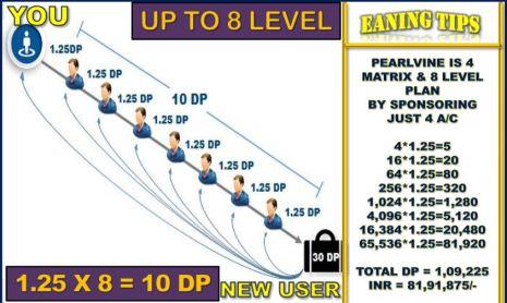 Pearlvine Team Performance Income