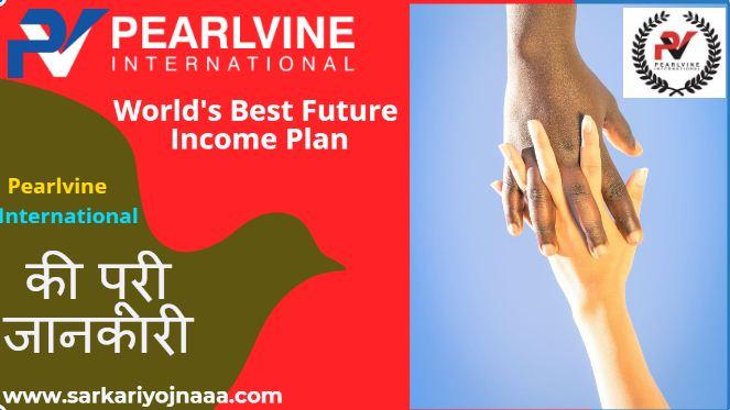 Pearlvine International Plan 2021