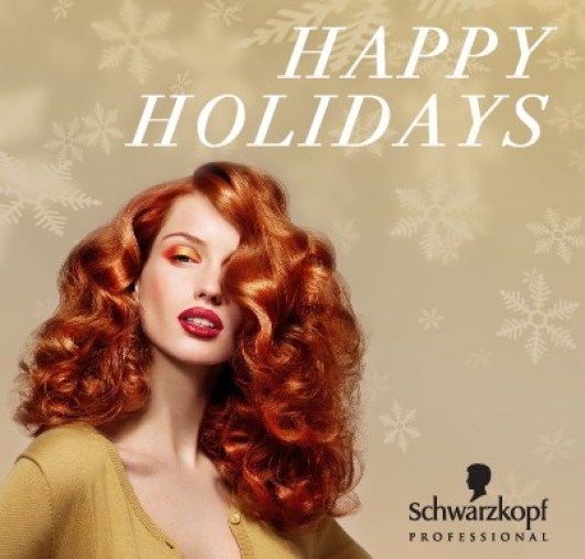 Schwarzkopf Professional Holiday Contest