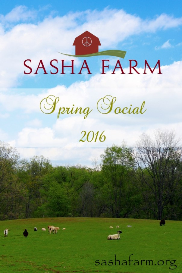 SPRING SOCIAL Sasha Farm Animal Sanctuary Goats Welcome Crew 1