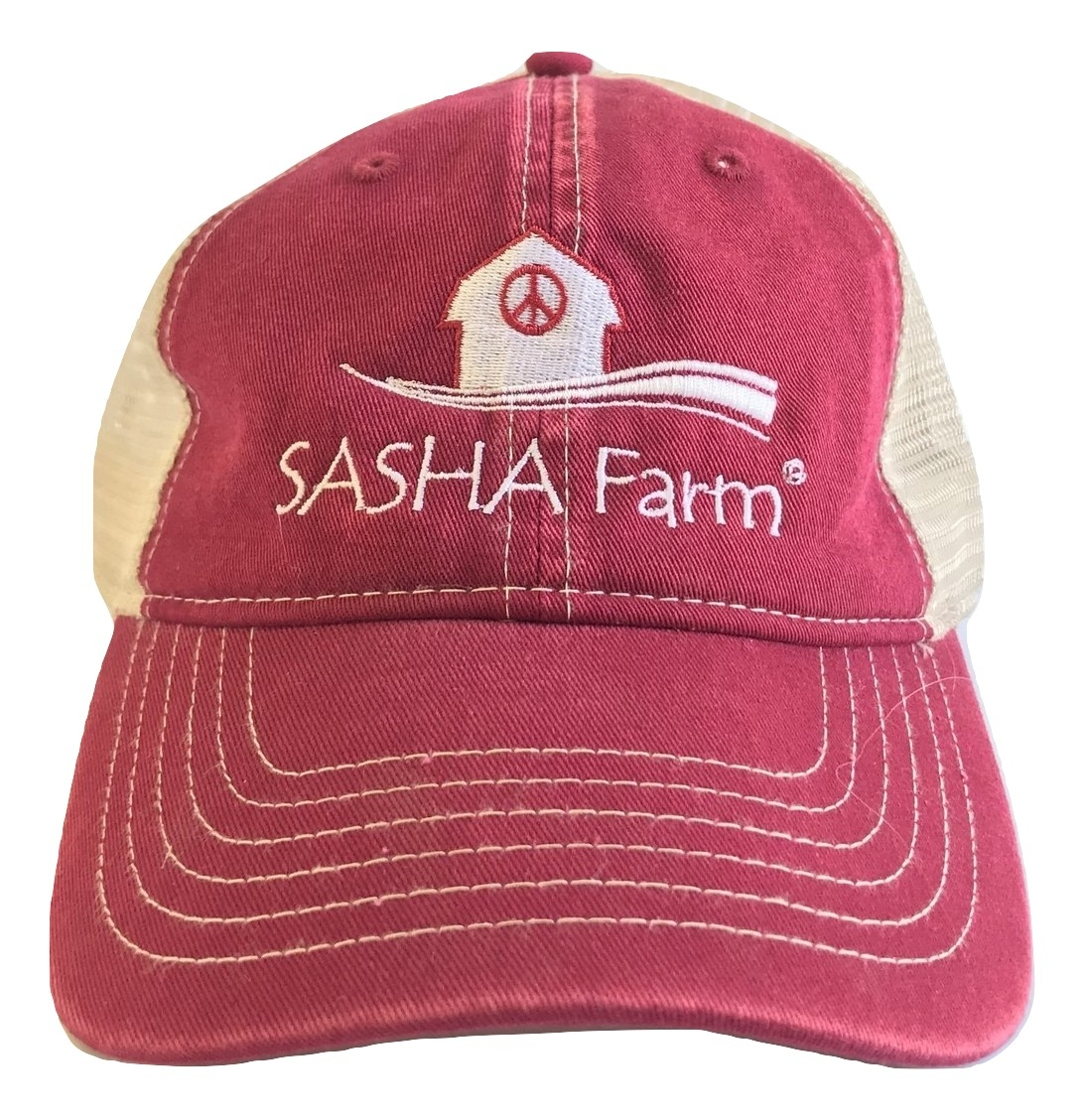 717077ae8dc Red Baseball Cap with Embroidered Logo