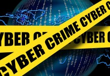 cyber piracy