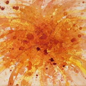 CRISANTEMO | CRISÂNTEMO | Chrysanthemum