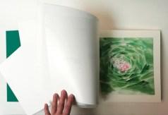 Hebario abierto 'SIEMPREVIVA'   30x33,5x5 cm