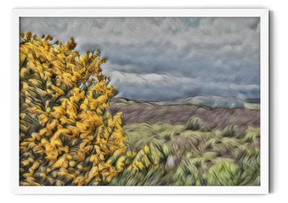 Wall art picture PT13: Broom Over Highlands. Impressionist oil