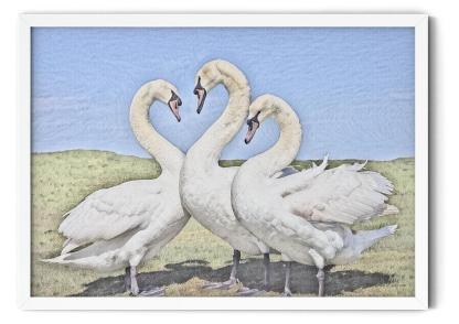 PT08: Love Is in the Air Wall Art Picture style: watercolour
