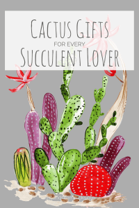 Cactus Gifts For Every Succulent Lover