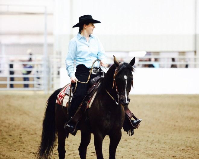 Arabian Reining Horse Beginner Show