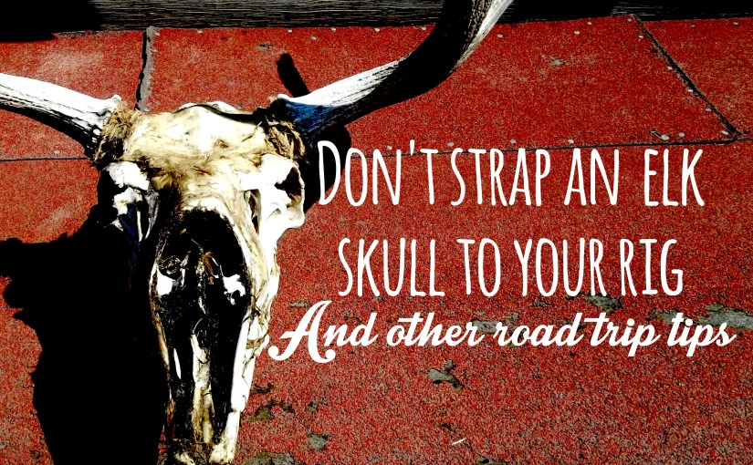 Don't Strap an Elk Skull to Your Rig, And Other Road Trip Tips