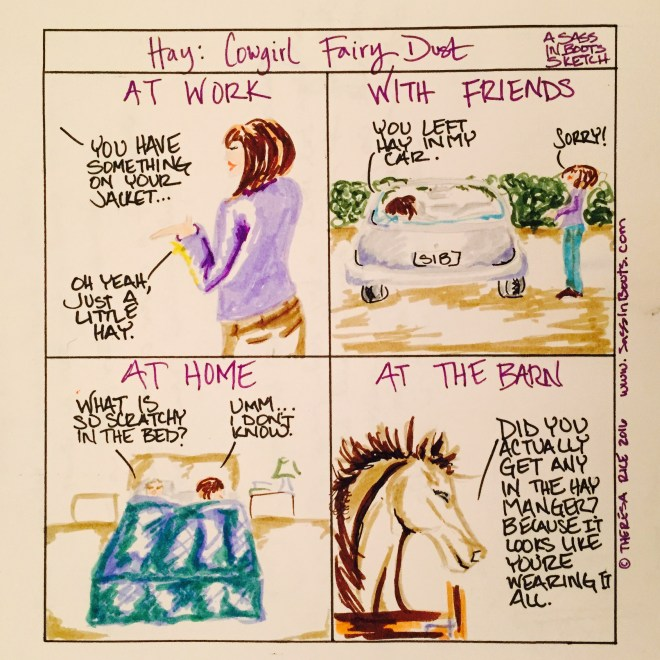 Cowgirl Fairy Dust Hay Everywhere Sketch