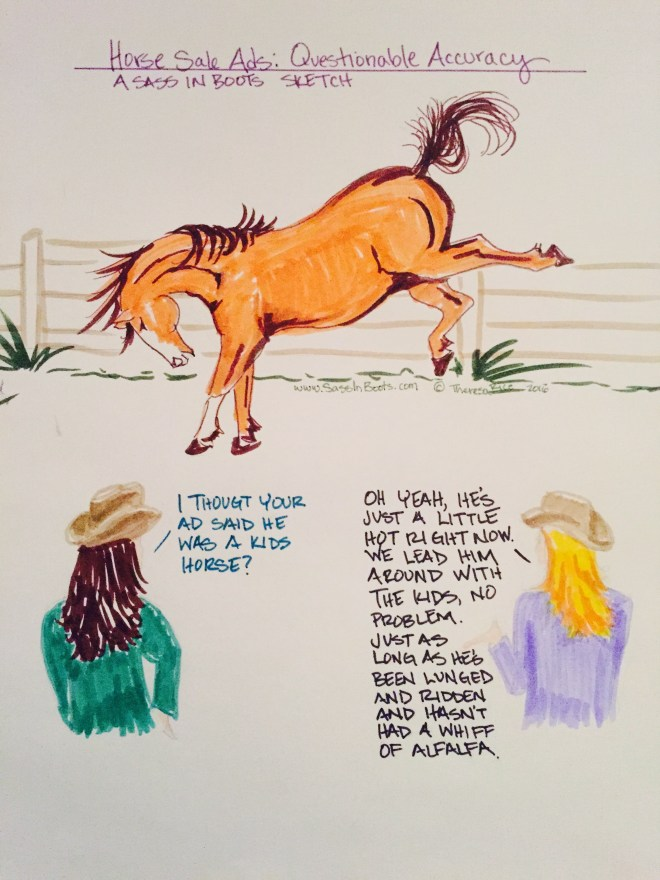 Horse Ad Lies A kids Horse Bucking Sketch
