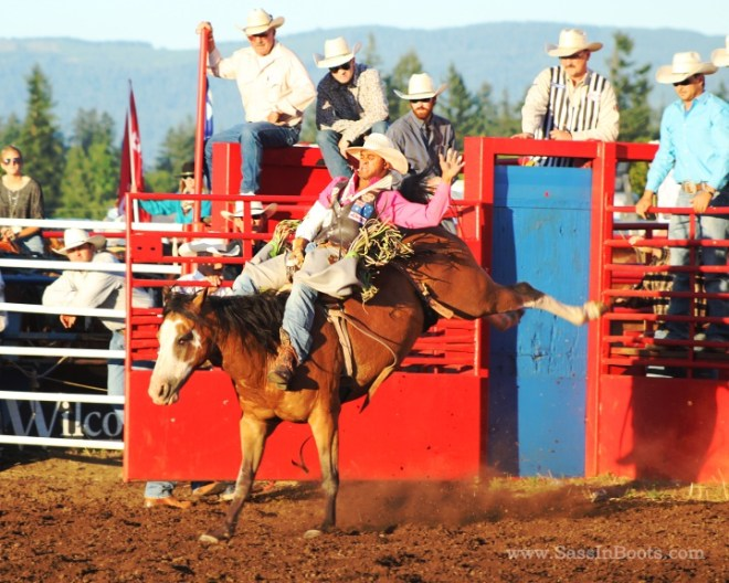 Bucking Saddle Bronc Horse