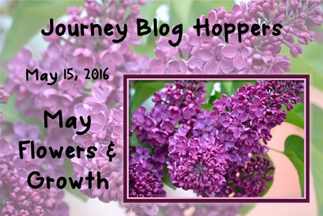 May Blog Hop