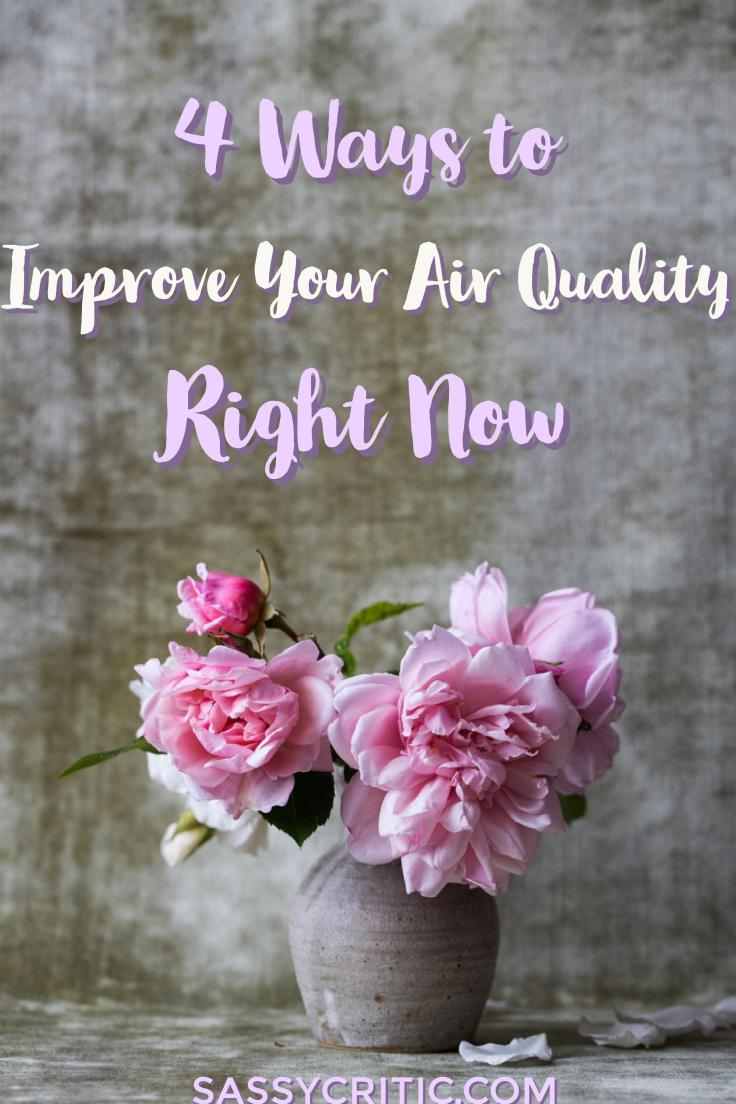 4 Things that Affect Air Quality & Health and How to Improve Them - SassyCritic.com