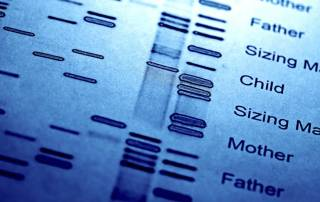 Paternity and Historical DNA