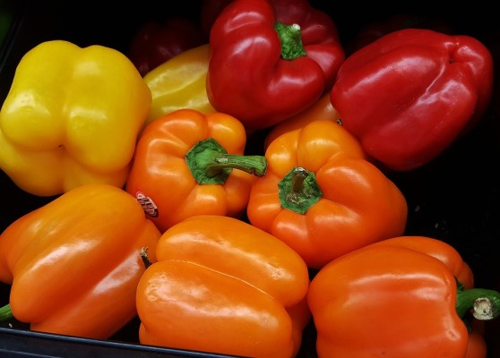 bell-peppers-1420709_960_720