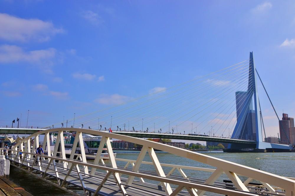 Erasmus bridge, Rotterdam, The Netherlands