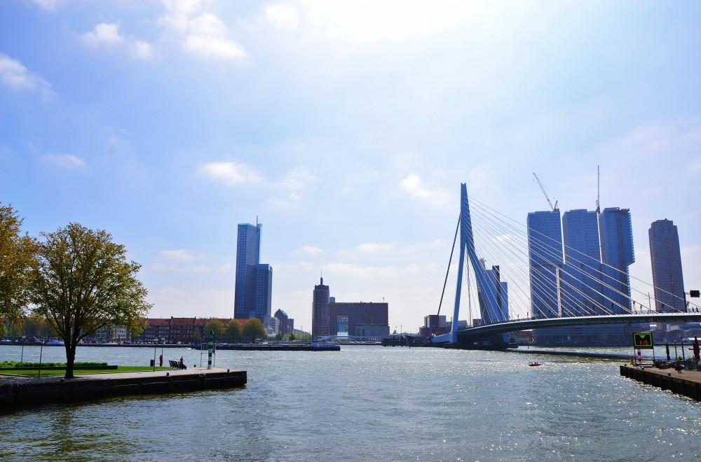 Erasmusbrug, Rotterdam, Holland