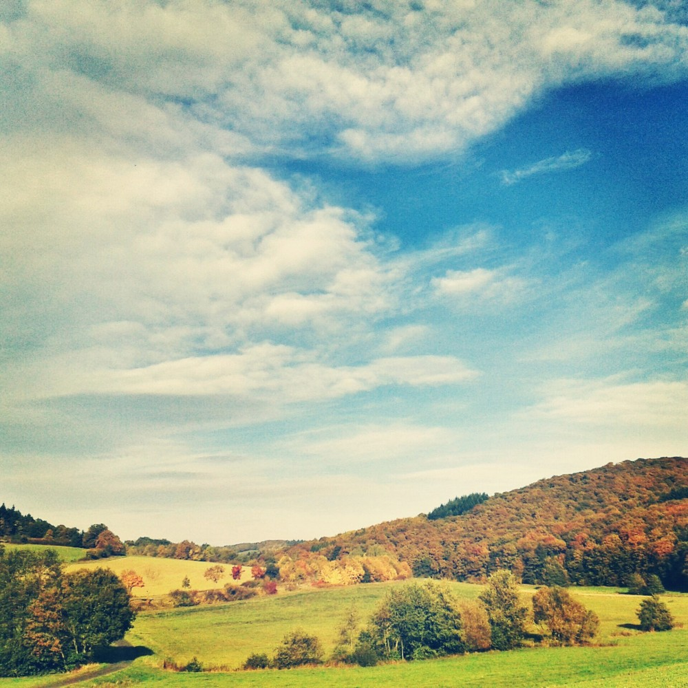 Fall in rural Germany