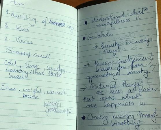 Sati Pasala Wellington Mindfulness Session - Feedback (4)