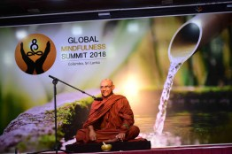 Global Mindfulness Summit 2018 - Inauguration (33)