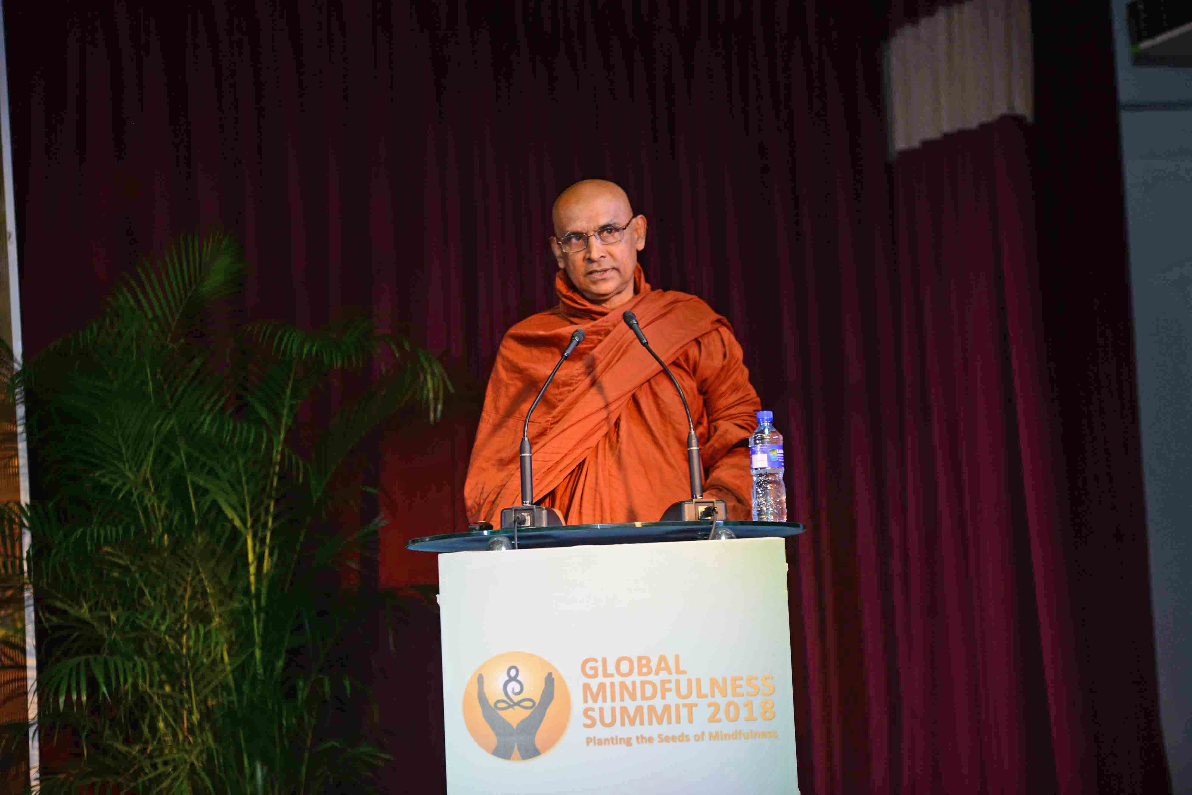 Global Mindfulness Summit 2018 - Day2 (23)