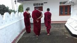 Sati Pasala at Alapalawala Pirivena, Daulagala (25)