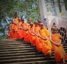 Special Satti Pasala Programme at Thumbagoda Sri Sudharshanarama Temple (11)