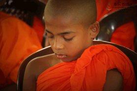 Special Satti Pasala Programme at Thumbagoda Sri Sudharshanarama Temple (12)