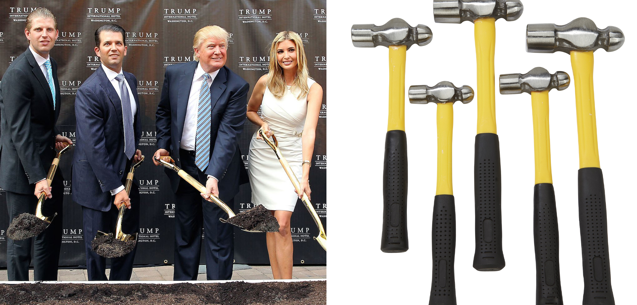 Scientists Can Finally Prove Which Trump Can Outsmart a Bag of Hammers