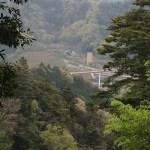 高尾山(4号路の景色)