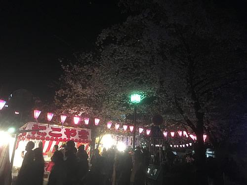 上大岡へ花見に行きました