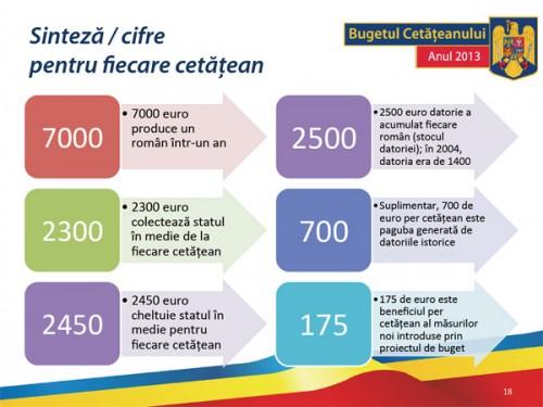 buget-2013-5