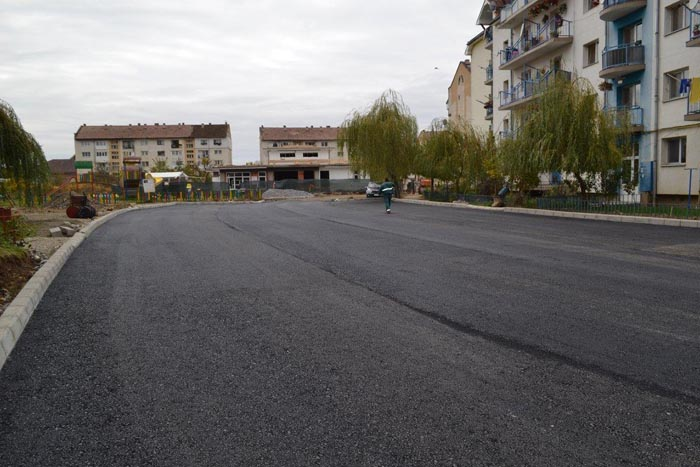 """Aurelia Fedorca: """"Continuăm să modernizăm orașul Negrești-Oaș"""""""