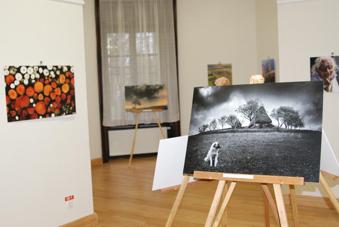 Expoziţie de fotografie la Castelul din Carei