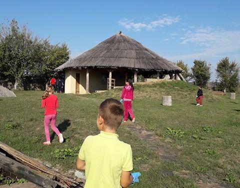 Actiune de ecologizare la Mediesu Aurit. Elevi implicati (Foto)