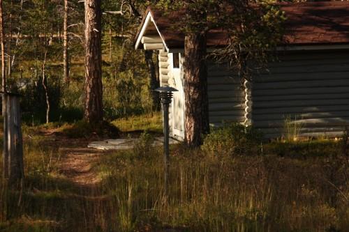 sauna-iltavalossa