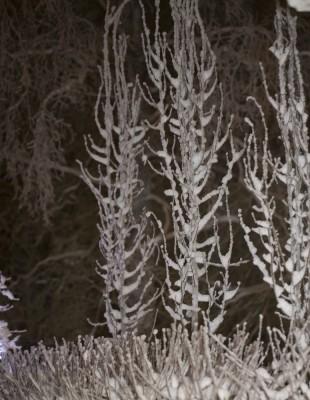 Talviperjantai-3