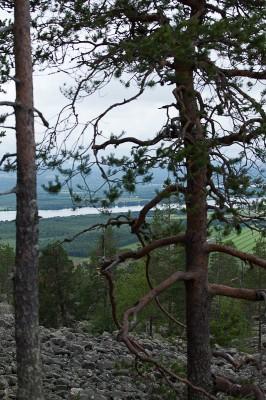 Tornionjokilaakson retki-17