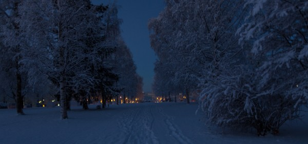 Winter wonderland-2