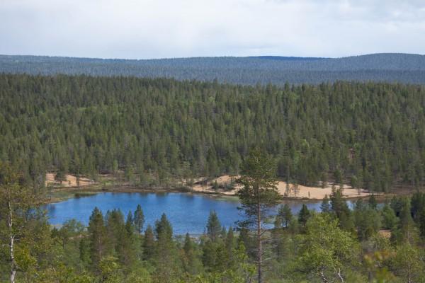 Patikka Luulammelle 2014-5