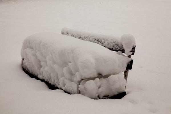 Pihlajanmarjat ja lumi_-5